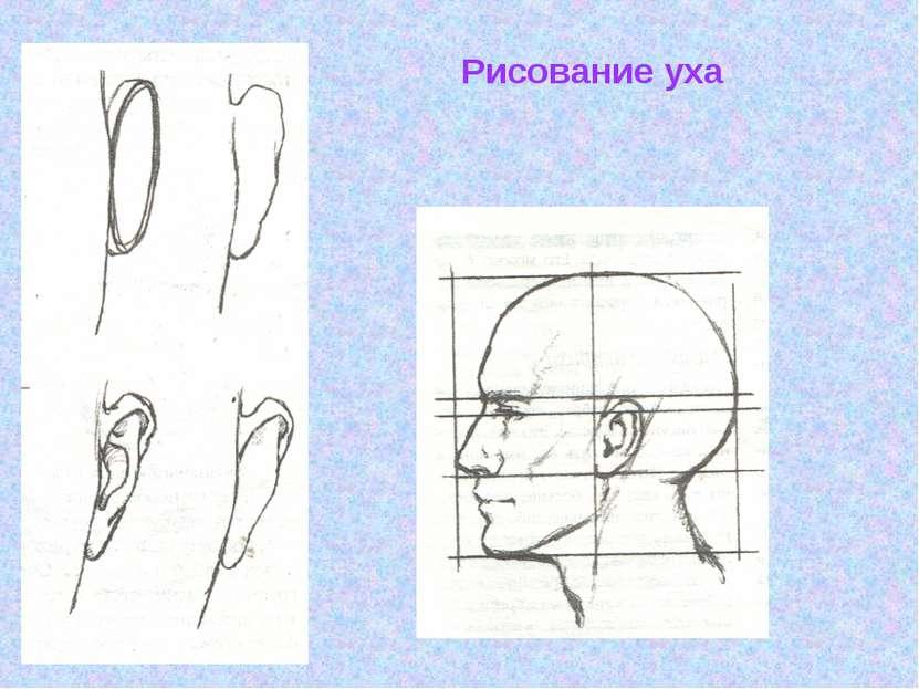 Рисование уха
