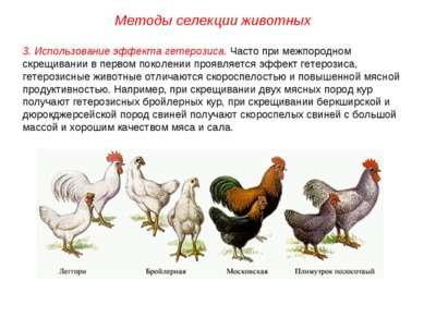 Методы селекции животных 3. Использование эффекта гетерозиса. Часто при межпо...