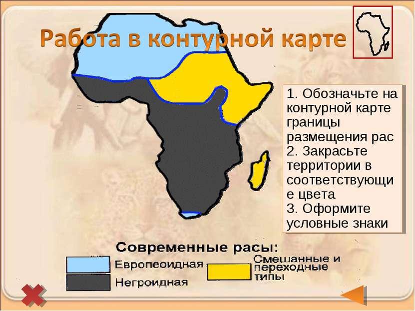 1. Обозначьте на контурной карте границы размещения рас 2. Закрасьте территор...