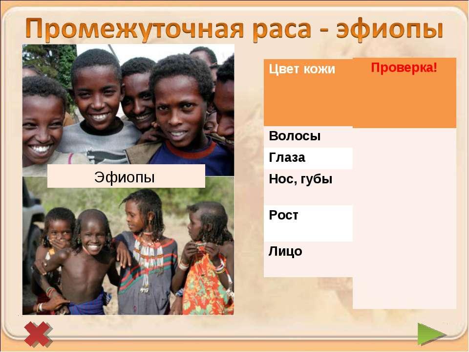 Эфиопы Цвет кожи Более светлая с красноватым оттенком Волосы Темный Глаза Тем...