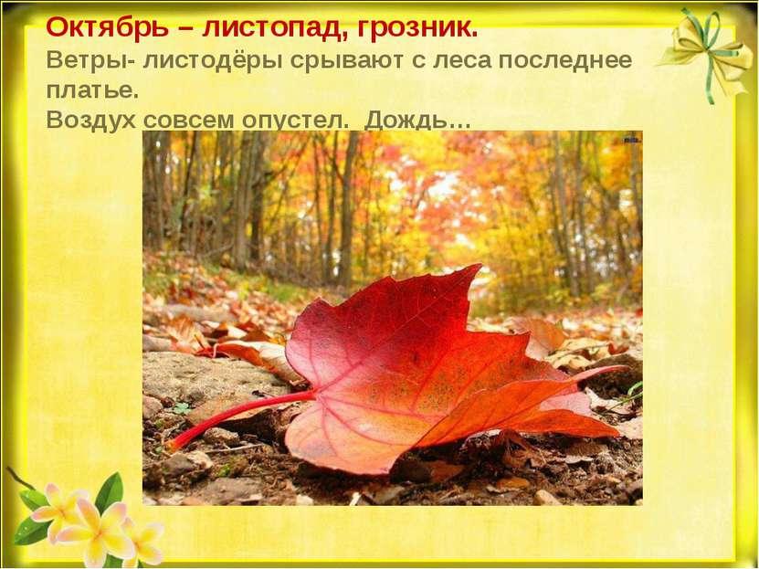 Октябрь – листопад, грозник. Ветры- листодёры срывают с леса последнее платье...