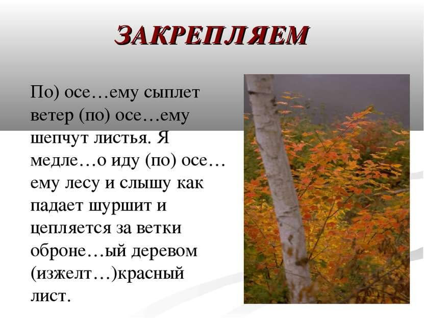ЗАКРЕПЛЯЕМ По) осе…ему сыплет ветер (по) осе…ему шепчут листья. Я медле…о иду...