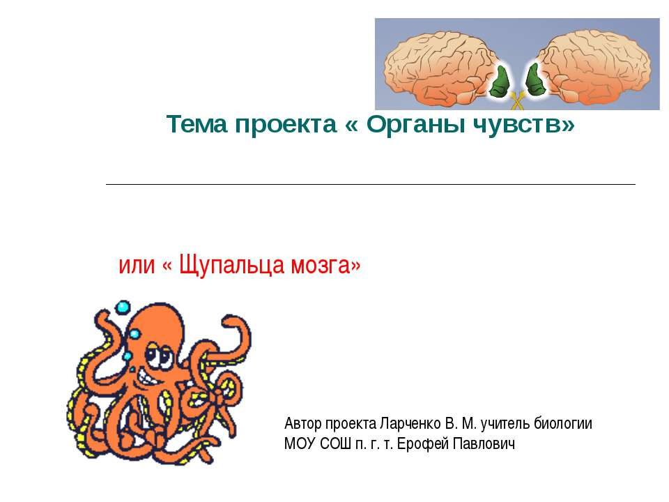 Тема проекта « Органы чувств» или « Щупальца мозга» Автор проекта Ларченко В....