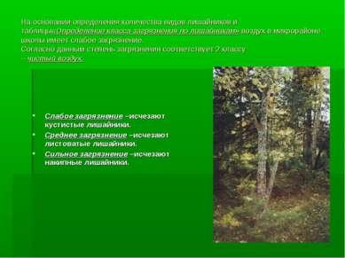 На основании определения количества видов лишайников и таблицы«Определение кл...