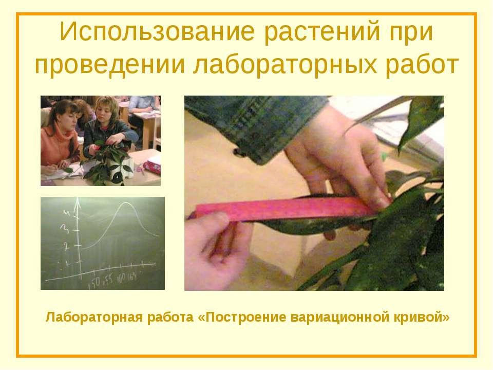 Использование растений при проведении лабораторных работ Лабораторная работа ...