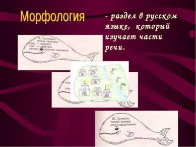 - раздел в русском языке, который изучает части речи.