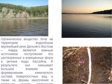 Органическое вещество почв на территории водосборов крупнейшей реки Дальнего ...