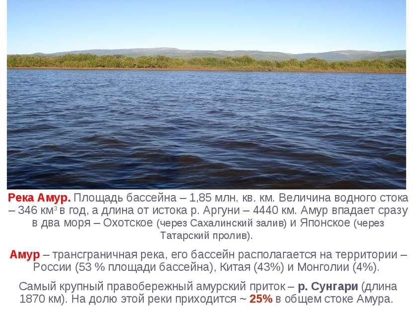 Река Амур. Площадь бассейна – 1,85 млн. кв. км. Величина водного стока – 346 ...