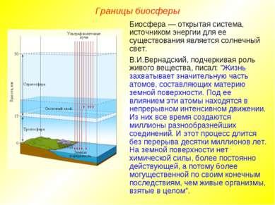 Границы биосферы Биосфера — открытая система, источником энергии для ее сущес...