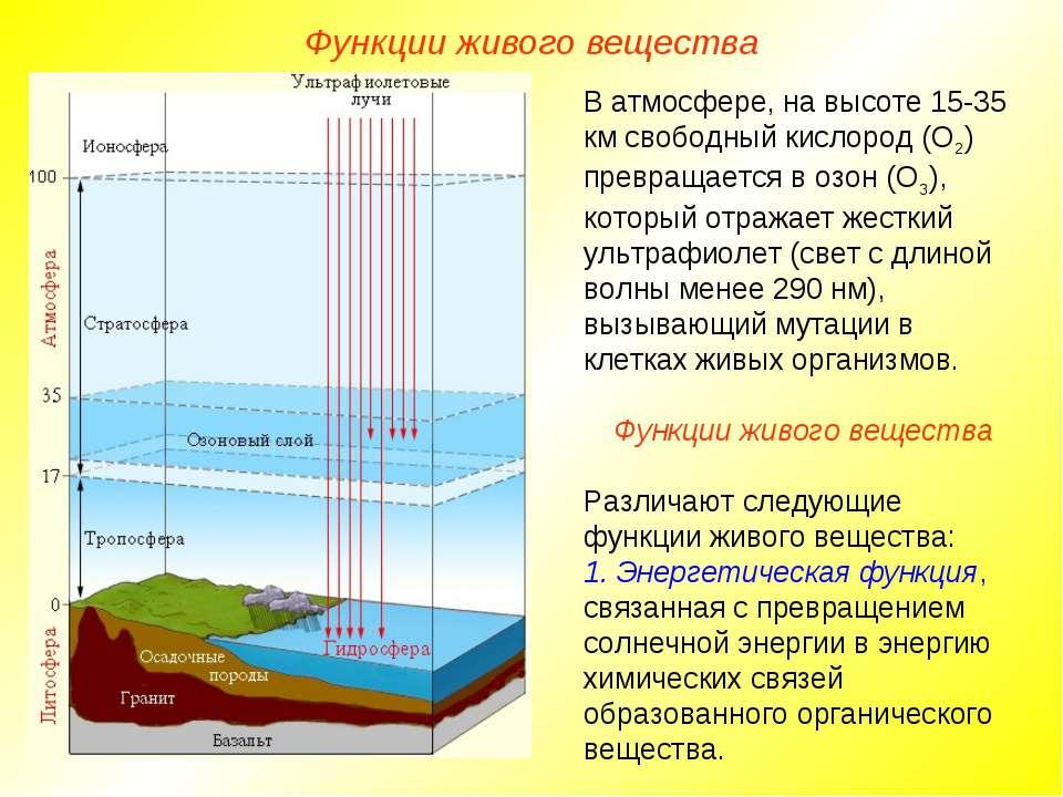 В атмосфере, на высоте 15-35 км свободный кислород (О2) превращается в озон (...