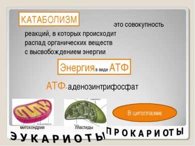 КАТАБОЛИЗМ -это совокупность реакций, в которых происходит распад органически...
