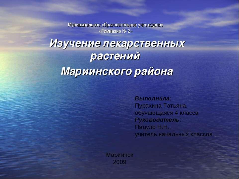 Муниципальное образовательное учреждение «Гимназия № 2» Изучение лекарственны...