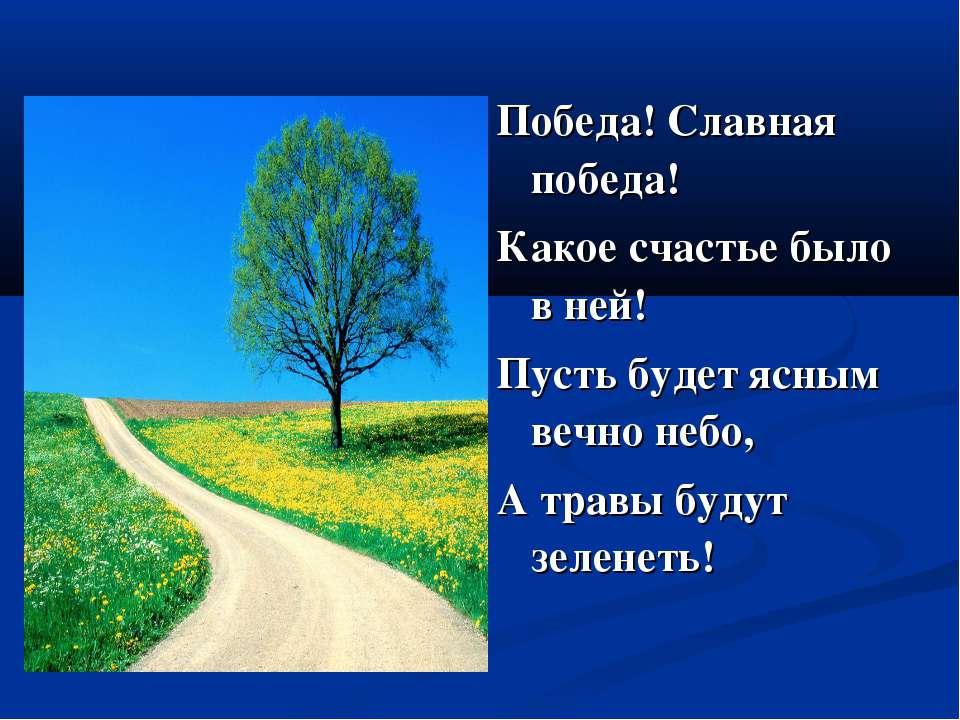 Победа! Славная победа! Какое счастье было в ней! Пусть будет ясным вечно неб...