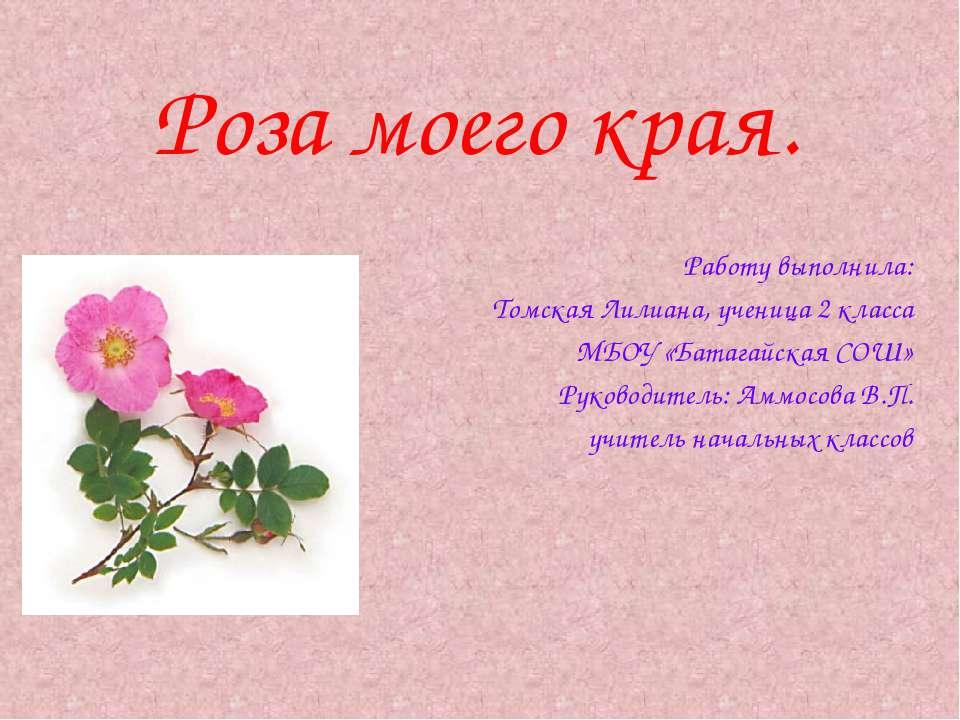 Роза моего края. Работу выполнила: Томская Лилиана, ученица 2 класса МБОУ «Ба...