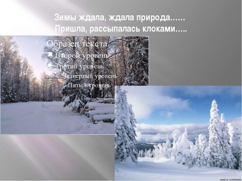 Зимы ждала, ждала природа…… Пришла, рассыпалась клоками…..