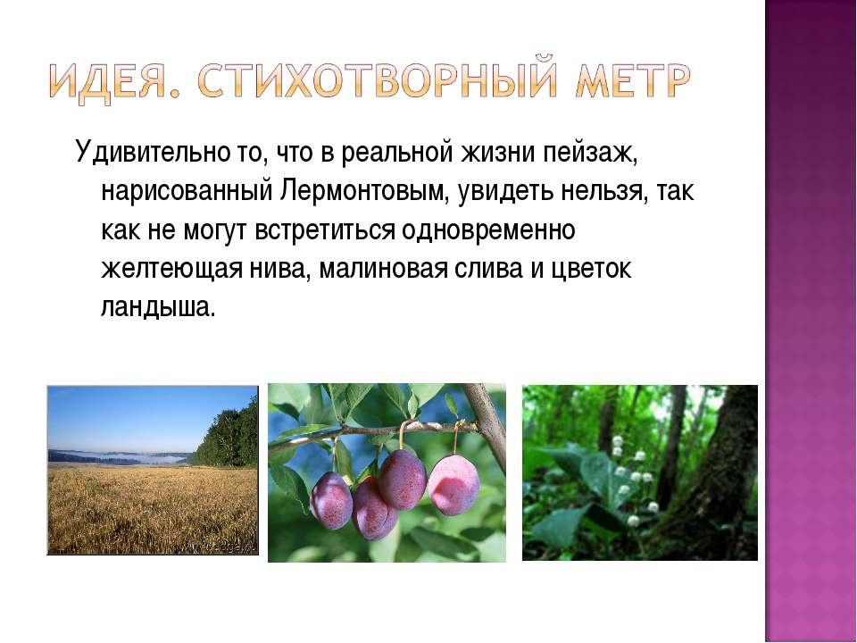 Удивительно то, что в реальной жизни пейзаж, нарисованный Лермонтовым, увидет...