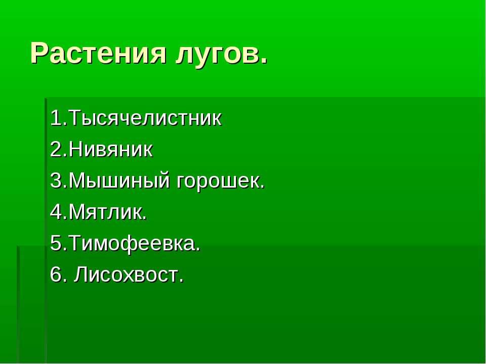 Растения лугов. 1.Тысячелистник 2.Нивяник 3.Мышиный горошек. 4.Мятлик. 5.Тимо...