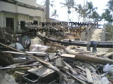 Цунами причинило громадный материальный ущерб