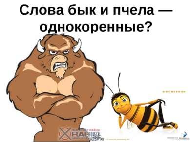 Слова бык и пчела — однокоренные?