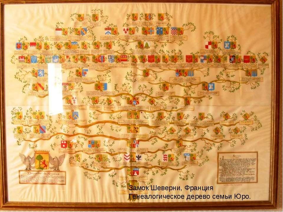 Замок Шеверни, Франция Генеалогическое дерево семьи Юро.