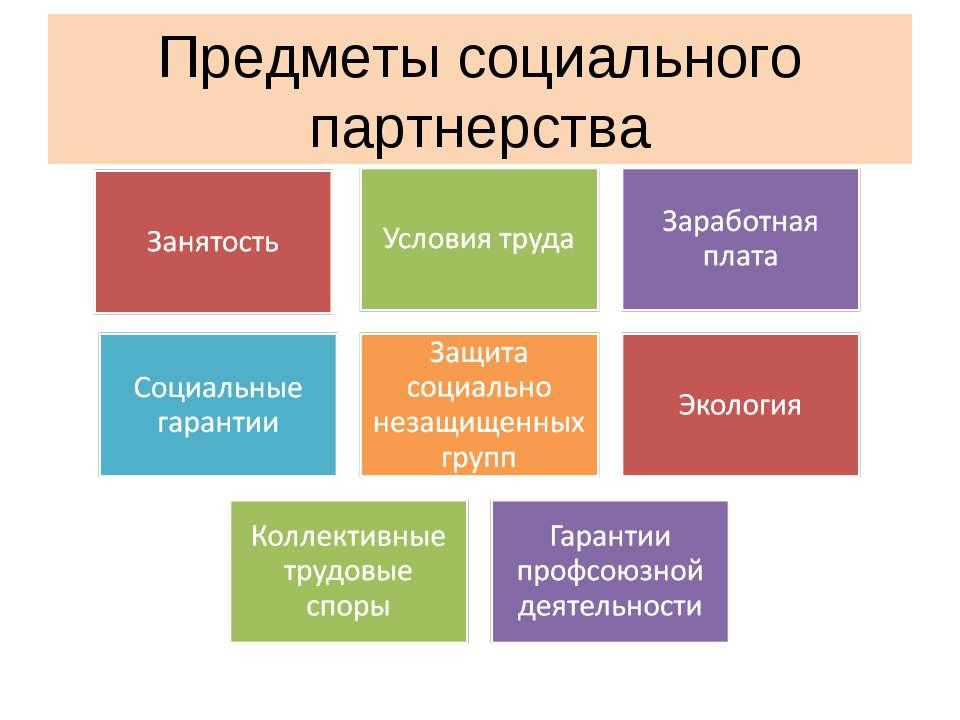 Предметы социального партнерства