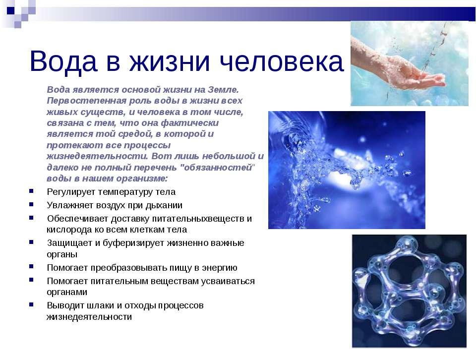 Реферат роль воды в жизнедеятельности человека 2818