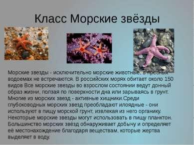 Класс Морские звёзды Морские звезды - исключительно морские животные, в пресн...