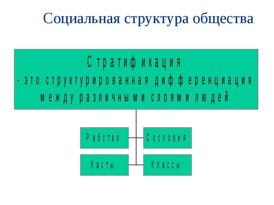 Социальная структура общества