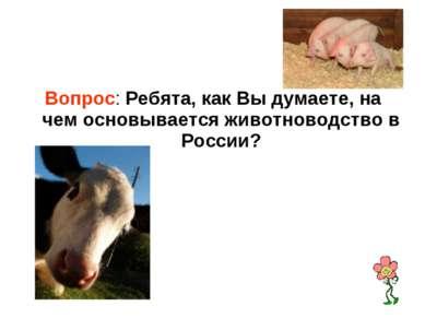 Вопрос: Ребята, как Вы думаете, на чем основывается животноводство в России?