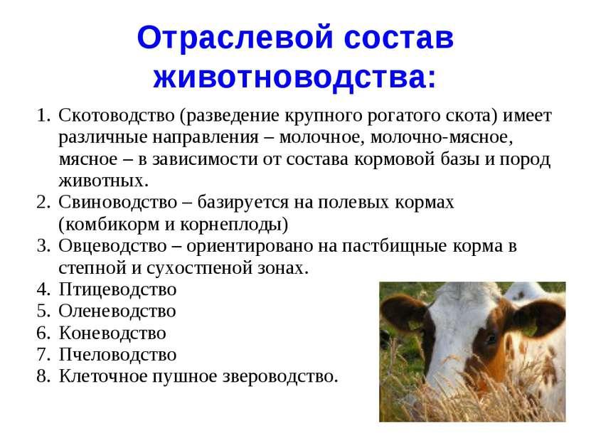 Отраслевой состав животноводства: