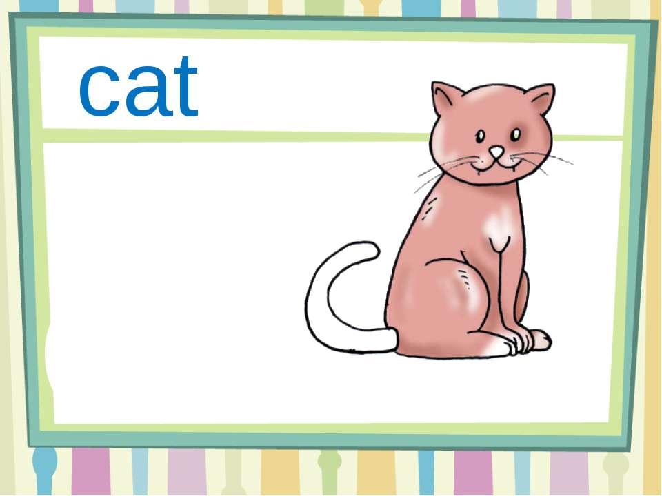 Cc cat