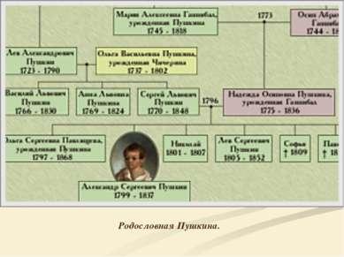 Родословная Пушкина.