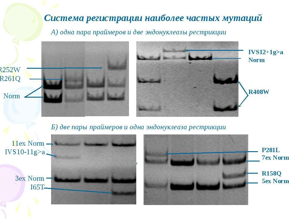 Система регистрации наиболее частых мутаций А) одна пара праймеров и две эндо...