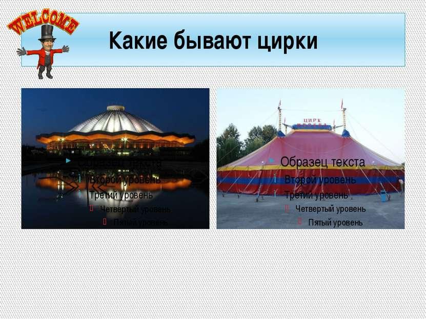 Какие бывают цирки