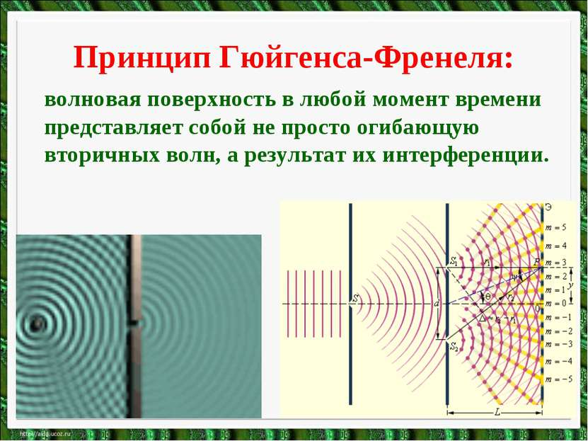 Принцип Гюйгенса-Френеля: волновая поверхность в любой момент времени предста...