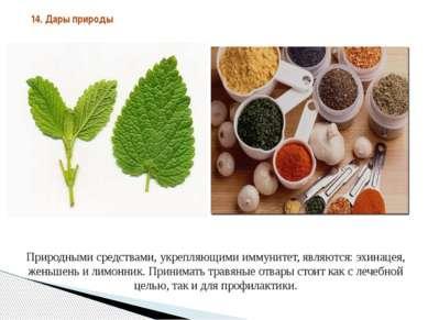 Природными средствами, укрепляющими иммунитет, являются: эхинацея, женьшень и...