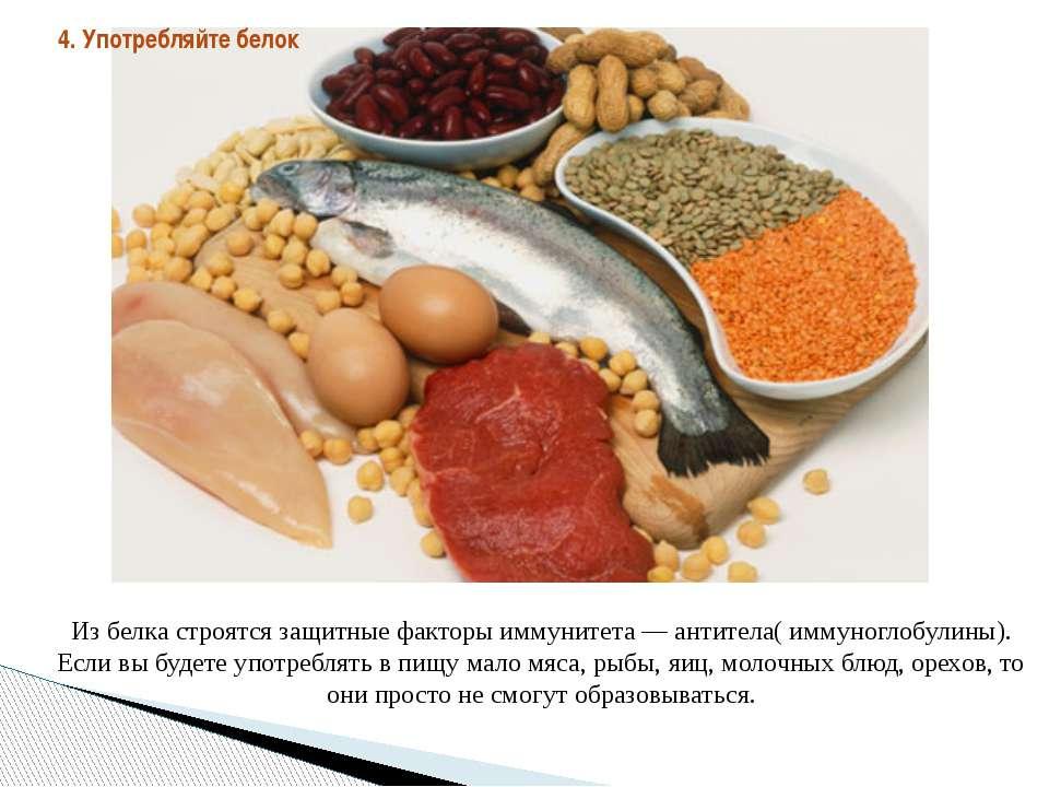 Из белка строятся защитные факторы иммунитета — антитела( иммуноглобулины). Е...