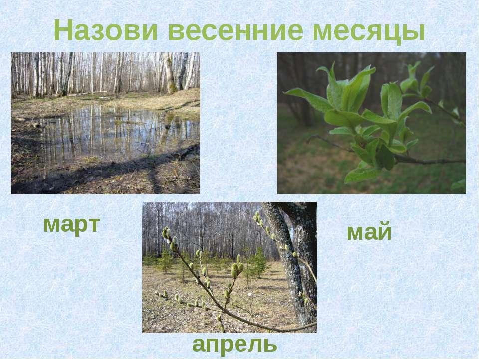 Назови весенние месяцы март май апрель
