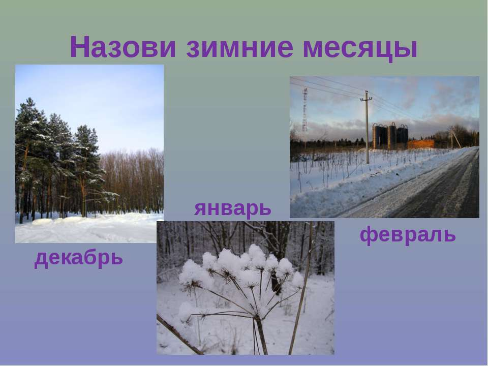Назови зимние месяцы декабрь январь февраль