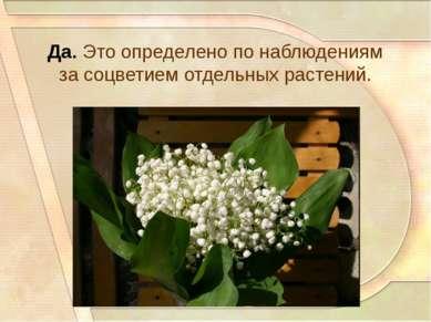 Да. Это определено по наблюдениям за соцветием отдельных растений.