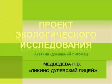 МЕДВЕДЕВА Н.В. «ЛИКИНО-ДУЛЕВСКИЙ ЛИЦЕЙ»