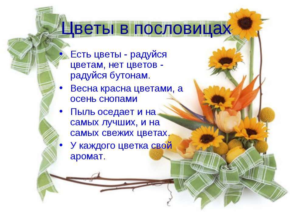 Цветы в пословицах Есть цветы - радуйся цветам, нет цветов - радуйся бутонам....