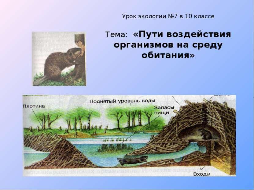 Урок экологии №7 в 10 классе Тема: «Пути воздействия организмов на среду обит...