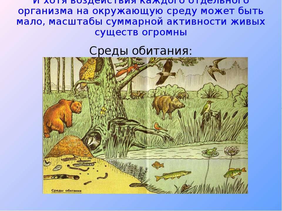 И хотя воздействия каждого отдельного организма на окружающую среду может быт...