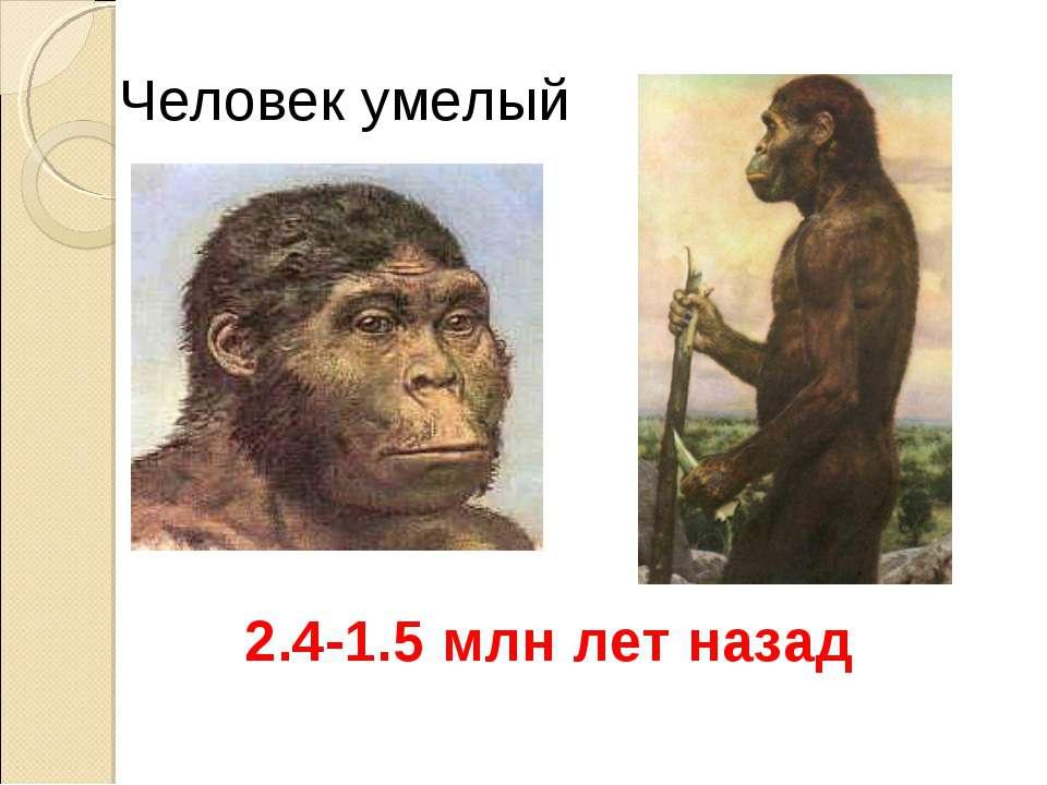 Человек умелый 2.4-1.5 млн лет назад