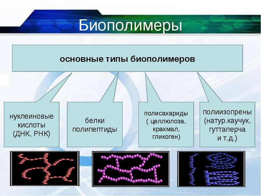 Биополимеры * основные типы биополимеров нуклеиновые кислоты (ДНК, РНК) белки...