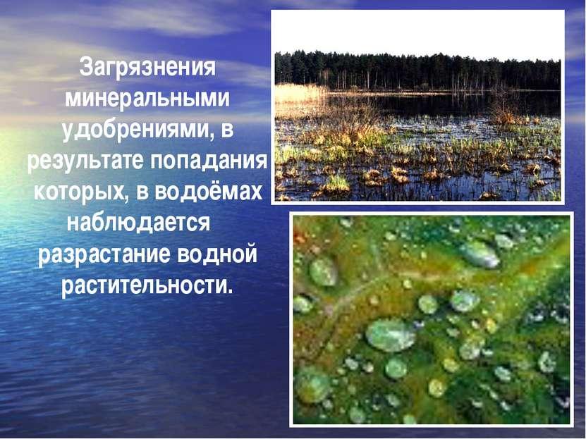 Загрязнения минеральными удобрениями, в результате попадания которых, в водоё...