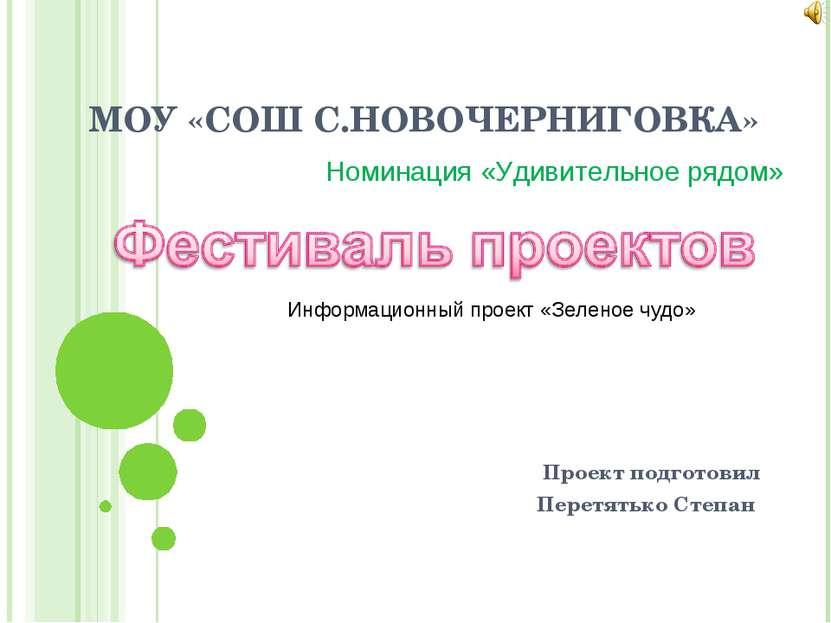МОУ «СОШ С.НОВОЧЕРНИГОВКА» Проект подготовил Перетятько Степан Номинация «Уди...