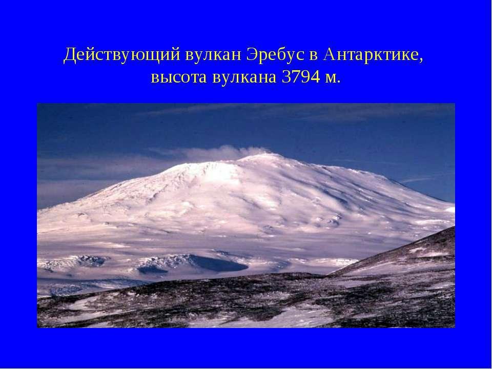 Действующий вулкан Эребус в Антарктике, высота вулкана 3794 м.
