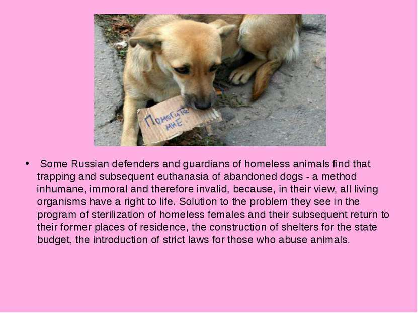 Some Russian defenders and guardians of homeless animals find that trapping a...